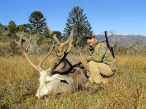 Hunting Patagonia